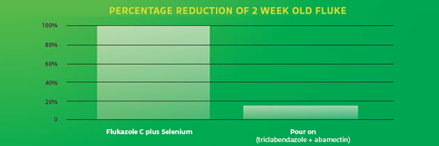Percentage reduction of 2 week old fluke