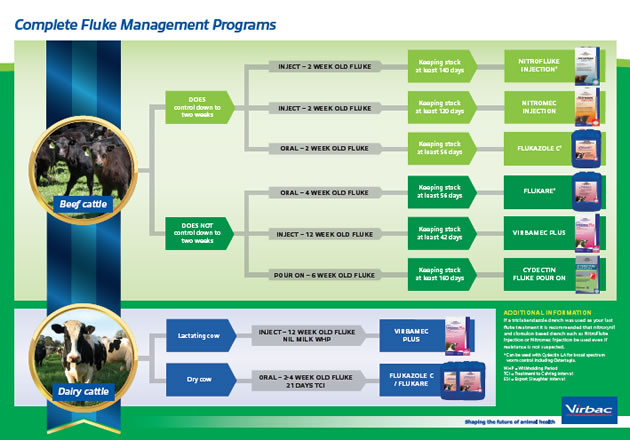 complete fluke management program