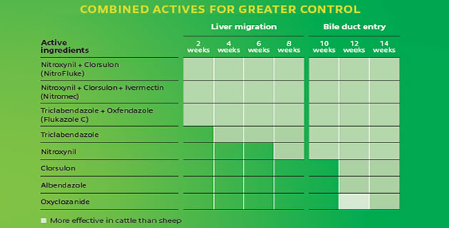 combined actives for greater control