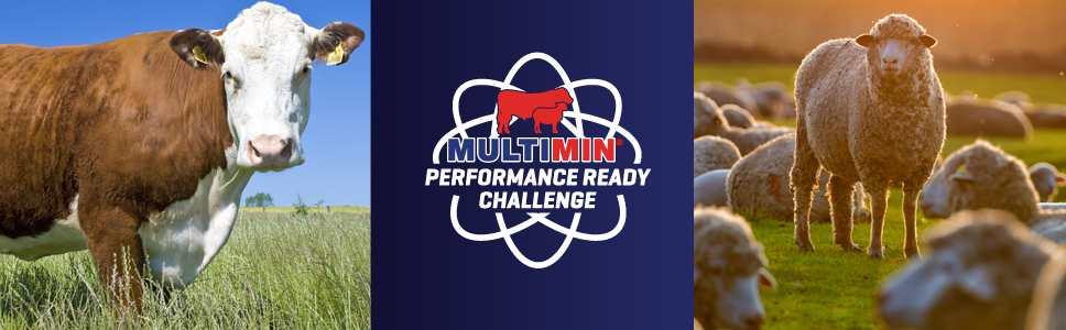 » Enter the Multimin Performance Ready Challenge website
